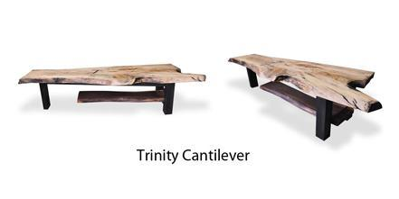 trinity-cantilever