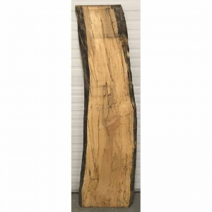 spalted silver maple 16-20x72